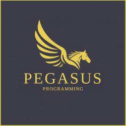 Pegasus Programming