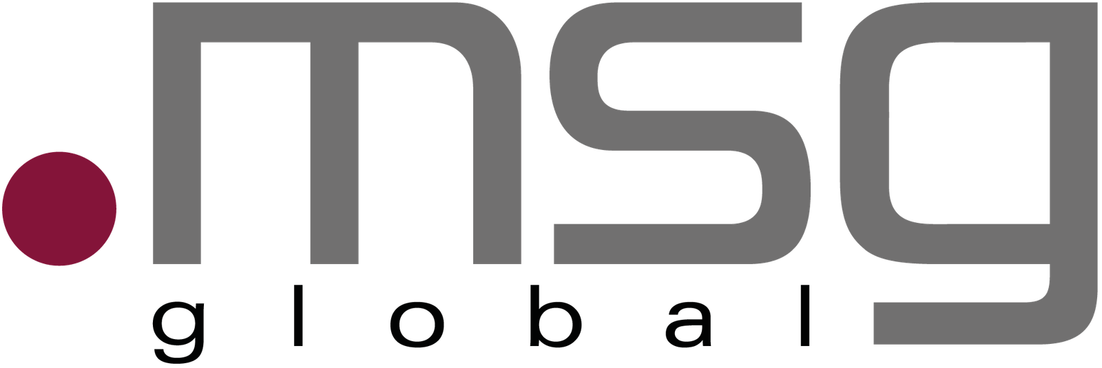 msg global solutions South East Europe-logo