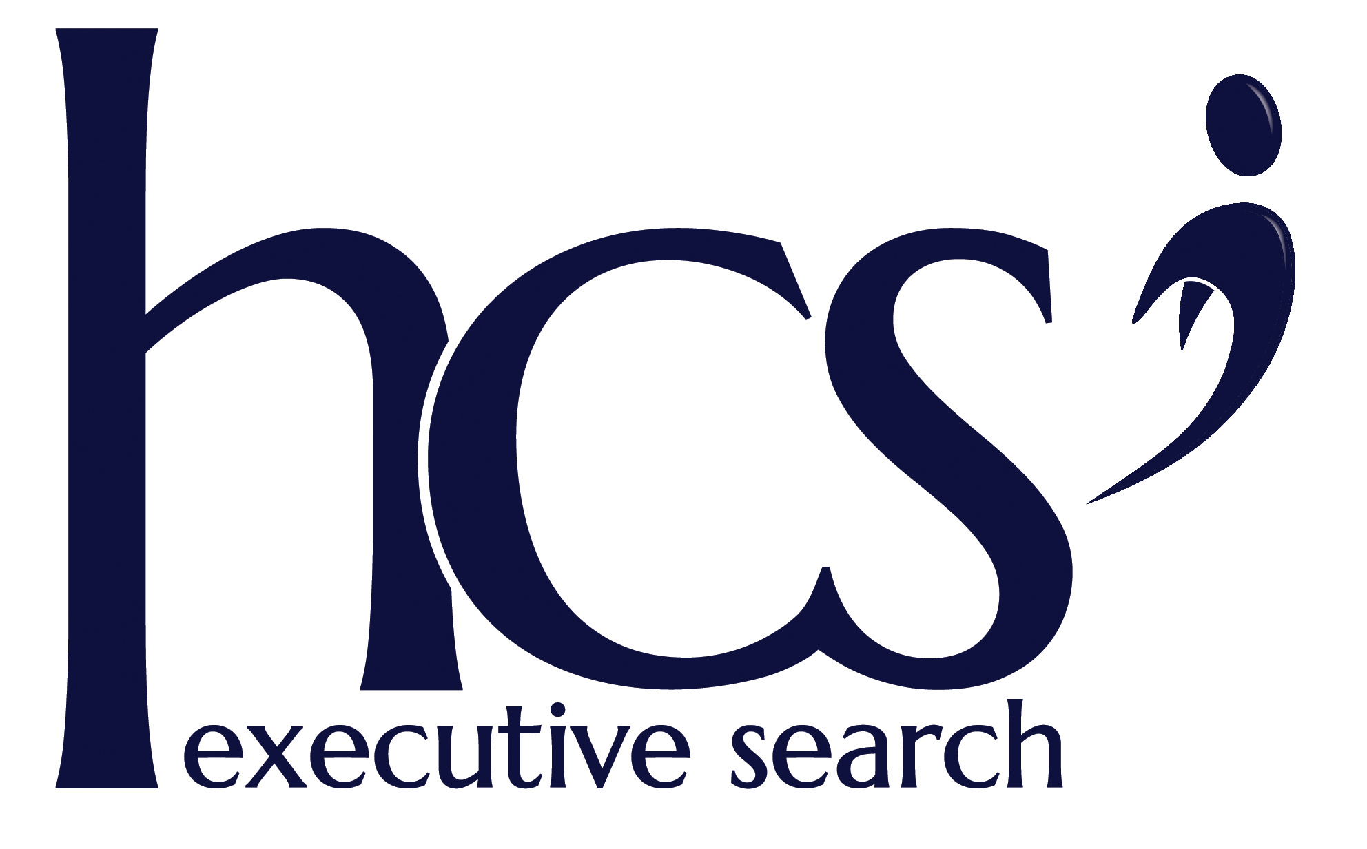 Human Capital Solutions  - Executive Search
